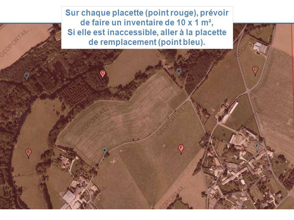 Sur chaque placette (point rouge), prévoir de faire un inventaire de 10 x 1 m², Si elle est inaccessible, aller à la placette de remplacement (point b