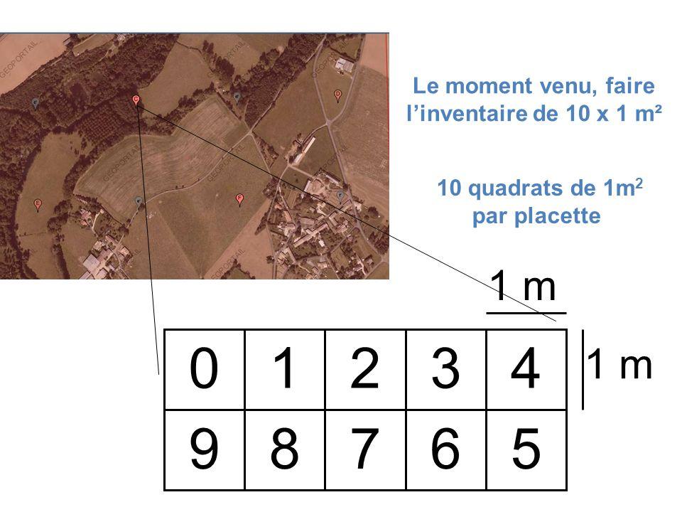 1 m 01234 59876 Le moment venu, faire linventaire de 10 x 1 m² 10 quadrats de 1m 2 par placette