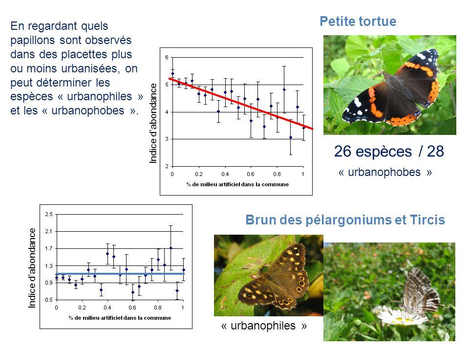 Indice dabondance 26 espèces / 28 Brun des pélargoniums et Tircis Petite tortue En regardant quels papillons sont observés dans des placettes plus ou
