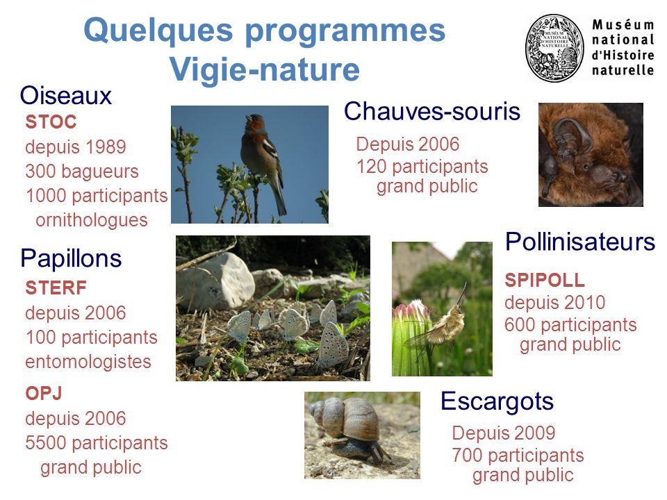 Quelques programmes Vigie-nature Oiseaux Papillons STOC depuis 1989 300 bagueurs 1000 participants ornithologues Depuis 2006 120 participants grand pu