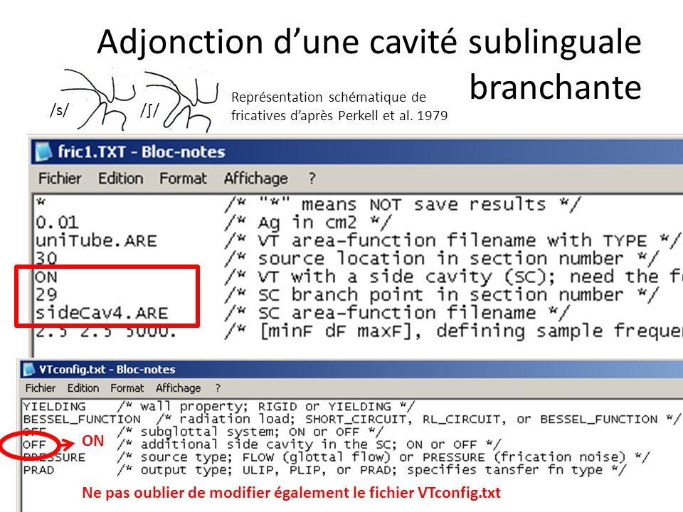Adjonction dune cavité sublinguale branchante Ne pas oublier de modifier également le fichier VTconfig.txt ON /s/// Représentation schématique de fric