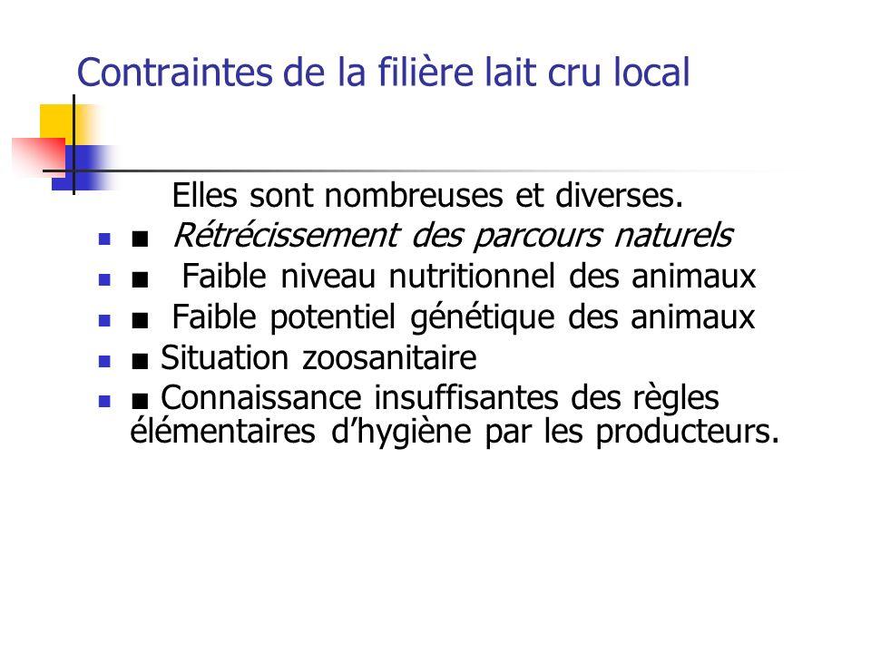 Contraintes de la filière lait cru local Elles sont nombreuses et diverses. Rétrécissement des parcours naturels Faible niveau nutritionnel des animau