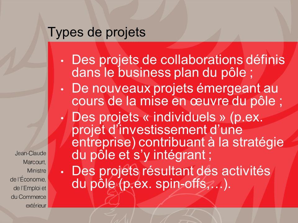Types de projets Des projets de collaborations définis dans le business plan du pôle ; De nouveaux projets émergeant au cours de la mise en œuvre du pôle ; Des projets « individuels » (p.ex.
