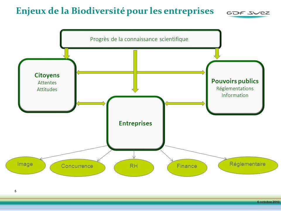 5 Enjeux de la Biodiversité pour les entreprises Citoyens Attentes Attitudes Progrès de la connaissance scientifique 6 octobre 2010 Pouvoirs publics Réglementations Information Entreprises Image ConcurrenceRHFinance Réglementaire