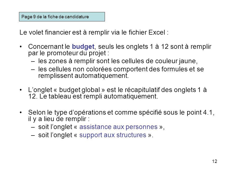 12 Le volet financier est à remplir via le fichier Excel : Concernant le budget, seuls les onglets 1 à 12 sont à remplir par le promoteur du projet :