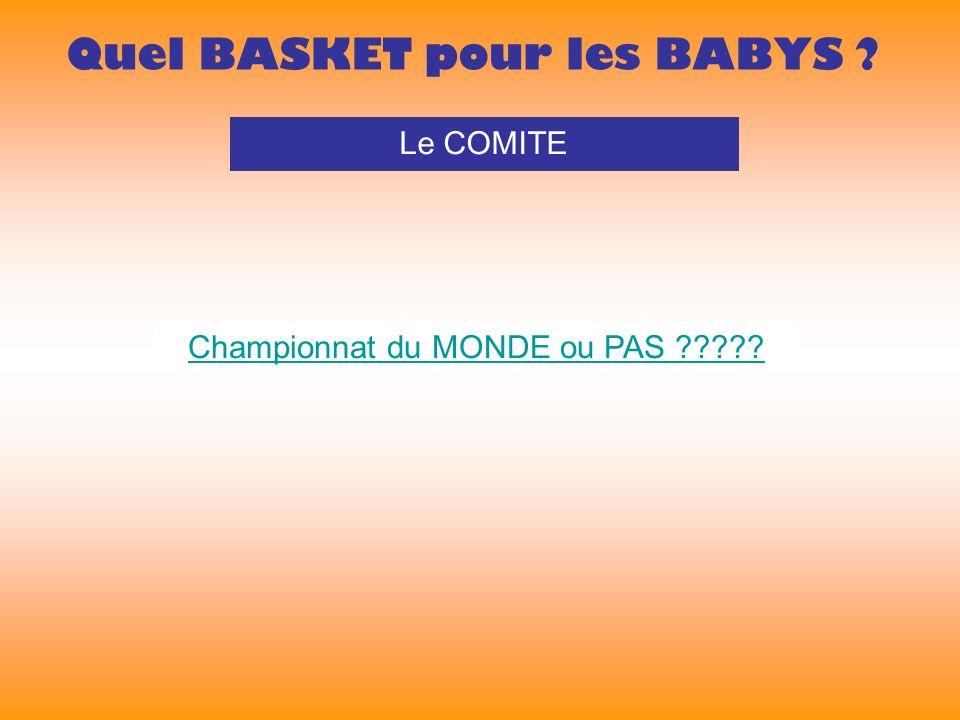 Quel BASKET pour les BABYS Le COMITE Championnat du MONDE ou PAS