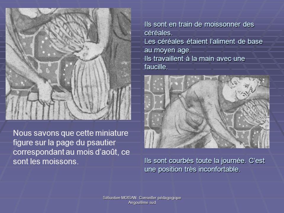 Sébastien MOISAN Conseiller pédagogique Angoulême sud Ils sont en train de moissonner des céréales. Les céréales étaient laliment de base au moyen age