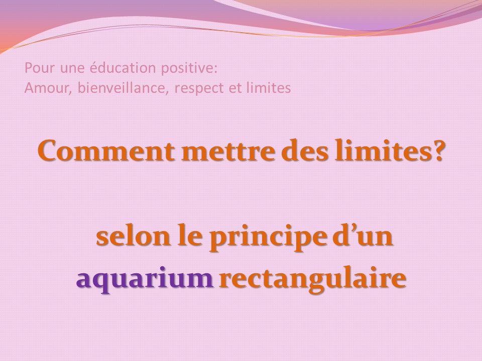 Pour une éducation positive: Amour, bienveillance, respect et limites Comment mettre des limites.