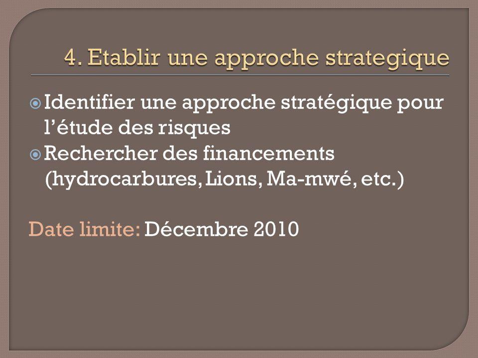 Identifier une approche stratégique pour létude des risques Rechercher des financements (hydrocarbures, Lions, Ma-mwé, etc.) Date limite: Décembre 2010