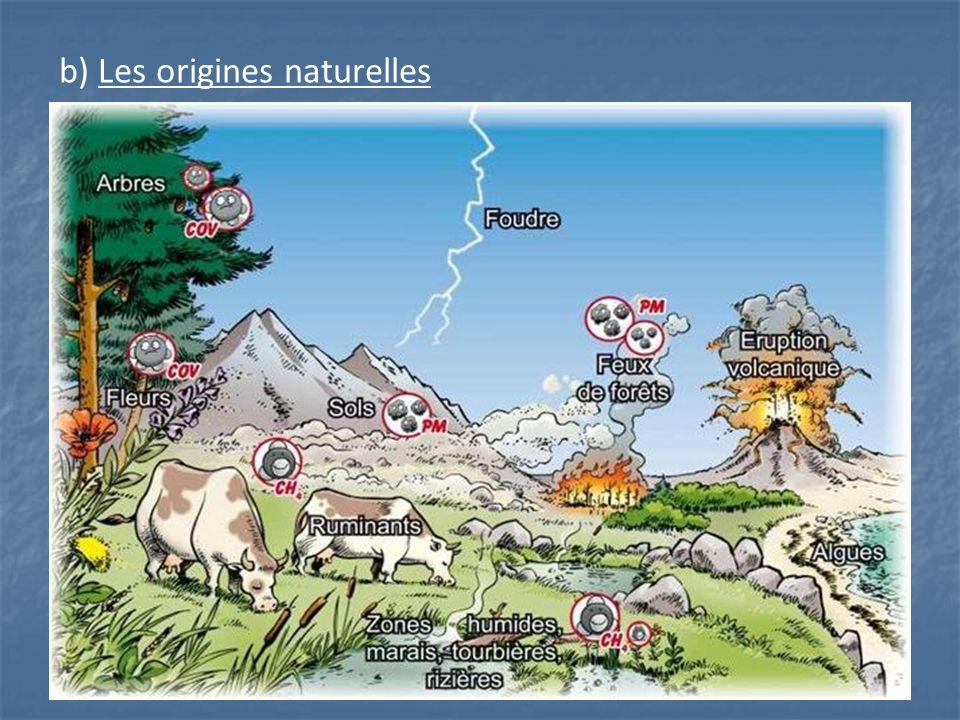 b) Les origines naturelles