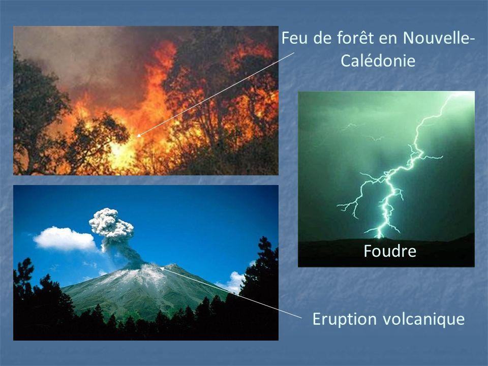 Feu de forêt en Nouvelle- Calédonie Eruption volcanique Foudre