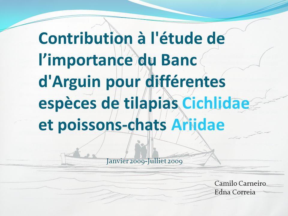 Contribution à l'étude de limportance du Banc d'Arguin pour différentes espèces de tilapias Cichlidae et poissons-chats Ariidae Camilo Carneiro Edna C