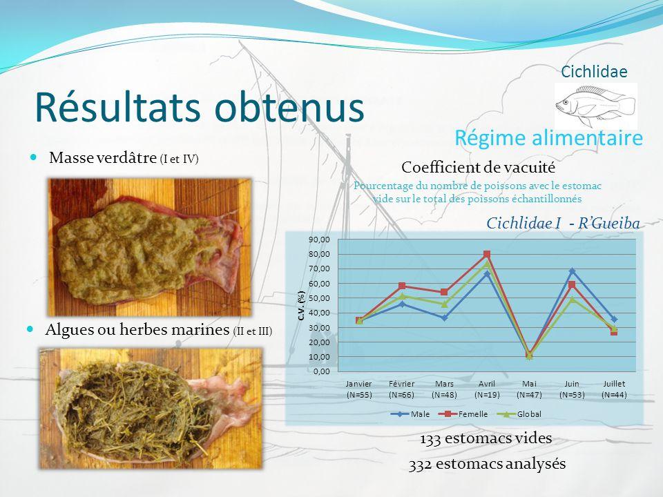 Résultats obtenus Cichlidae Régime alimentaire Coefficient de vacuité Pourcentage du nombre de poissons avec le estomac vide sur le total des poissons