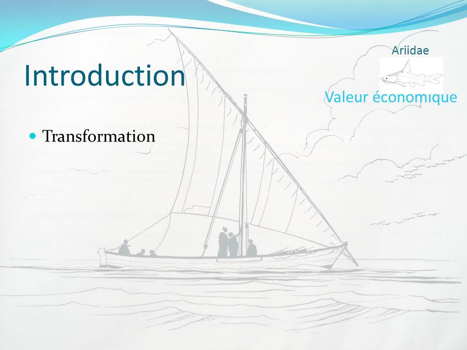 Introduction Transformation Valeur économique Ariidae