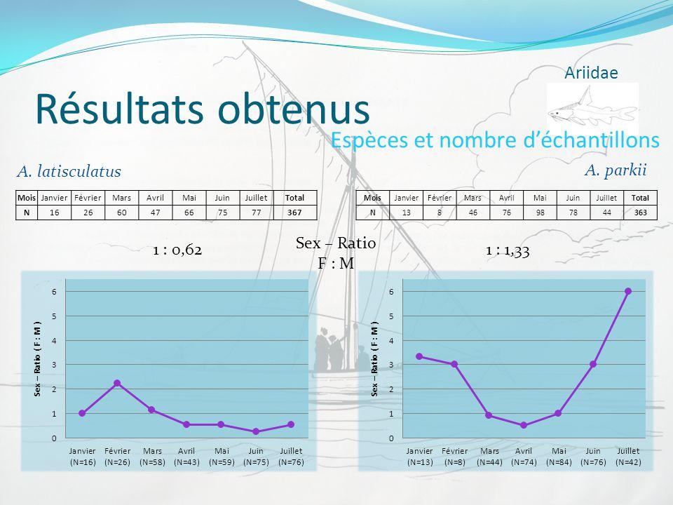 Résultats obtenus Ariidae Espèces et nombre déchantillons A. parkii A. latisculatus MoisJanvierFévrierMarsAvrilMaiJuinJuilletTotal N16266047667577367