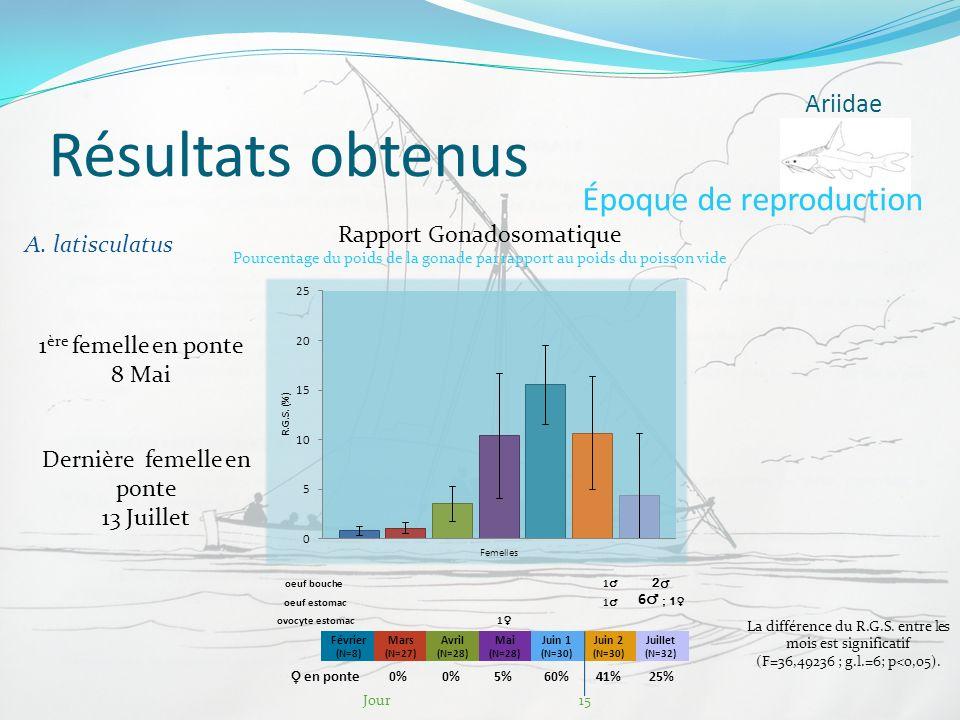 Résultats obtenus Ariidae Époque de reproduction A. latisculatus Février (N=8) Mars (N=27) Avril (N=28) Mai (N=28) Juin 1 (N=30) Juin 2 (N=30) Juillet