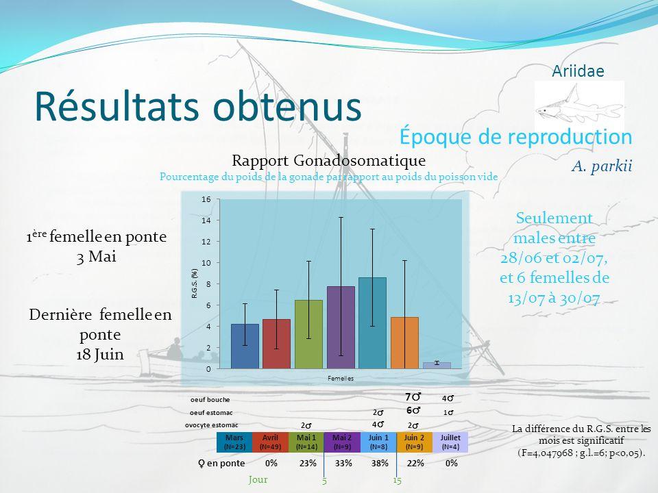 Résultats obtenus Ariidae Époque de reproduction A. parkii Rapport Gonadosomatique Mars (N=23) Avril (N=49) Mai 1 (N=14) Mai 2 (N=9) Juin 1 (N=8) Juin
