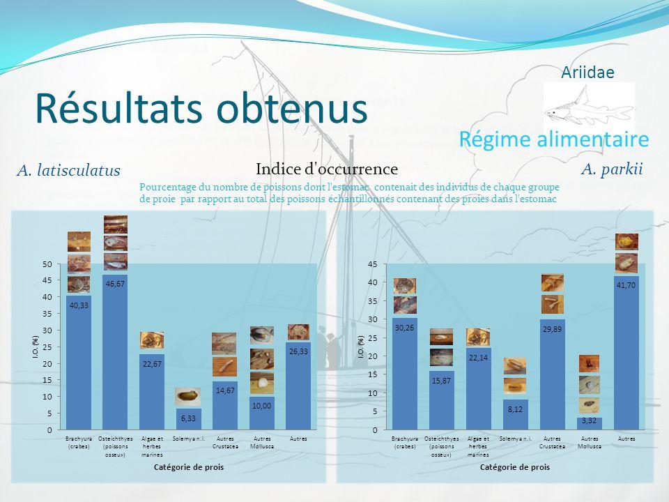 Résultats obtenus Ariidae Régime alimentaire A. parkii A. latisculatus Indice d'occurrence Pourcentage du nombre de poissons dont l'estomac contenait