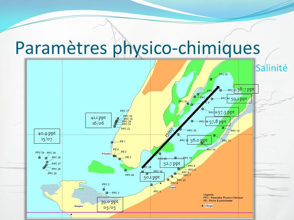 Paramètres physico-chimiques Salinité 39,0 ppt 05/05 40,9 ppt 15/07 41,1 ppt 16/06 58,7 ppt 59,1 ppt 57,3 ppt 57,8 ppt 56,0 ppt 52,7 ppt 50,1 ppt 17/0