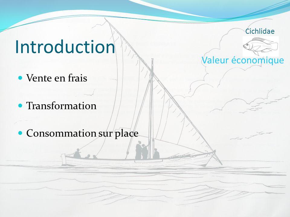Introduction Vente en frais Transformation Consommation sur place Cichlidae Valeur économique
