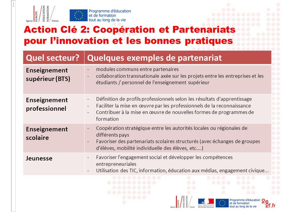 Action Clé 2: Coopération et Partenariats pour linnovation et les bonnes pratiques Quel secteur?Quelques exemples de partenariat Enseignement supérieu