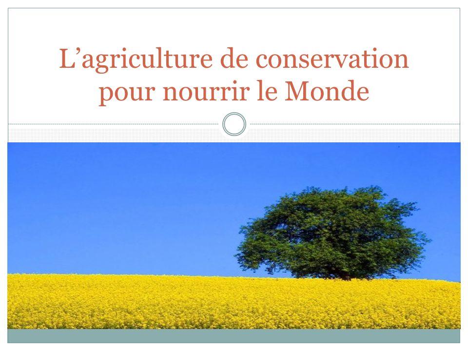 Lagriculture de conservation pour nourrir le Monde