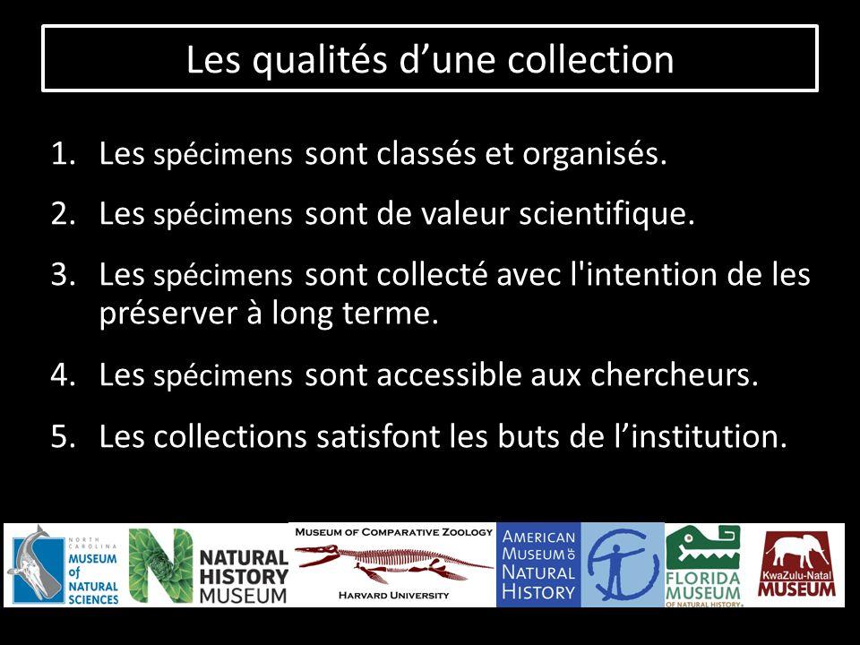 Les qualités dune collection 1.Les spécimens sont classés et organisés.