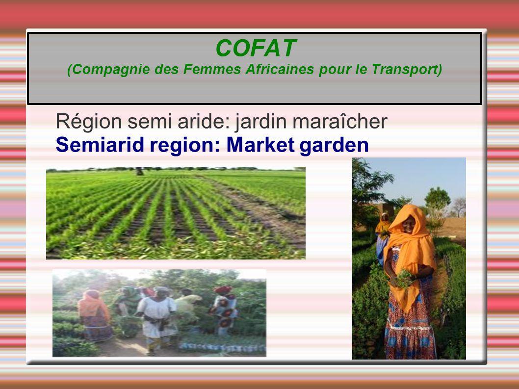 Région semi aride: jardin maraîcher Semiarid region: Market garden COFAT (Compagnie des Femmes Africaines pour le Transport)