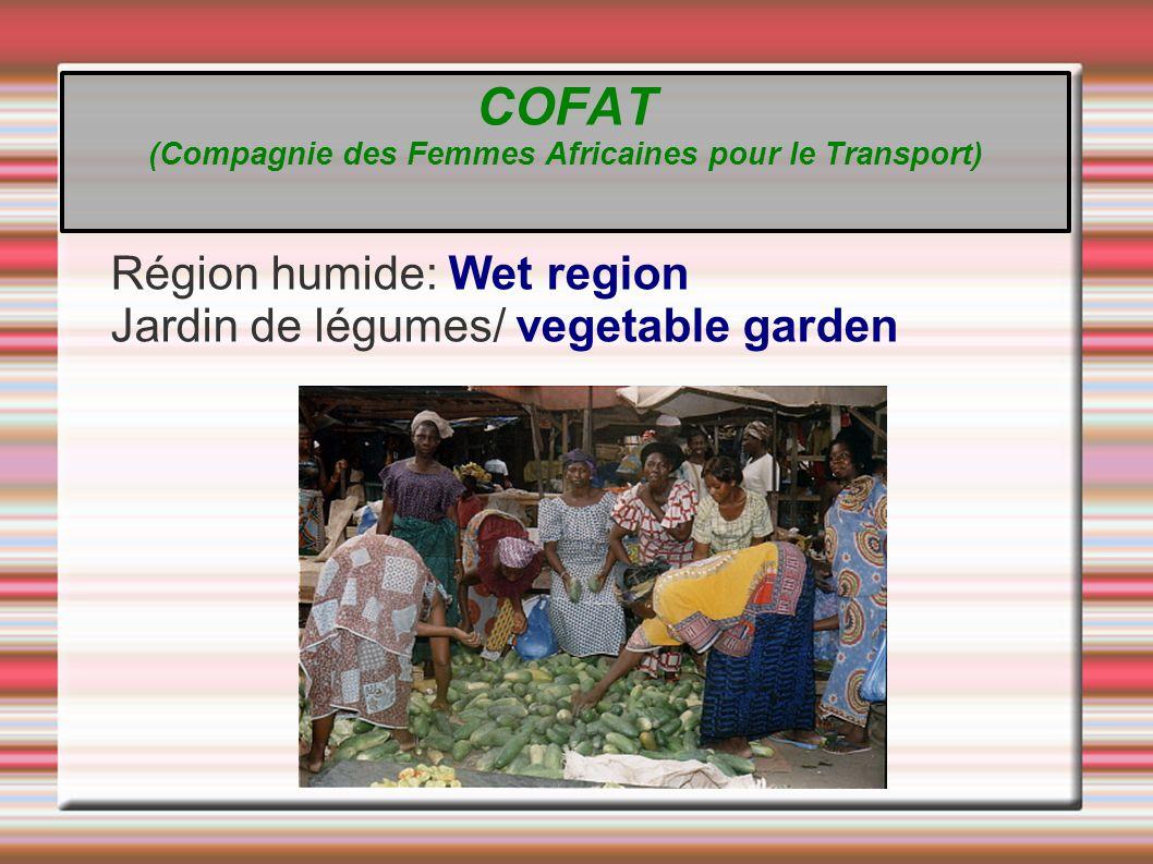 Région humide/ Wet region Production et Transformation Production and Transformation COFAT (Compagnie des Femmes Africaines pour le Transport)
