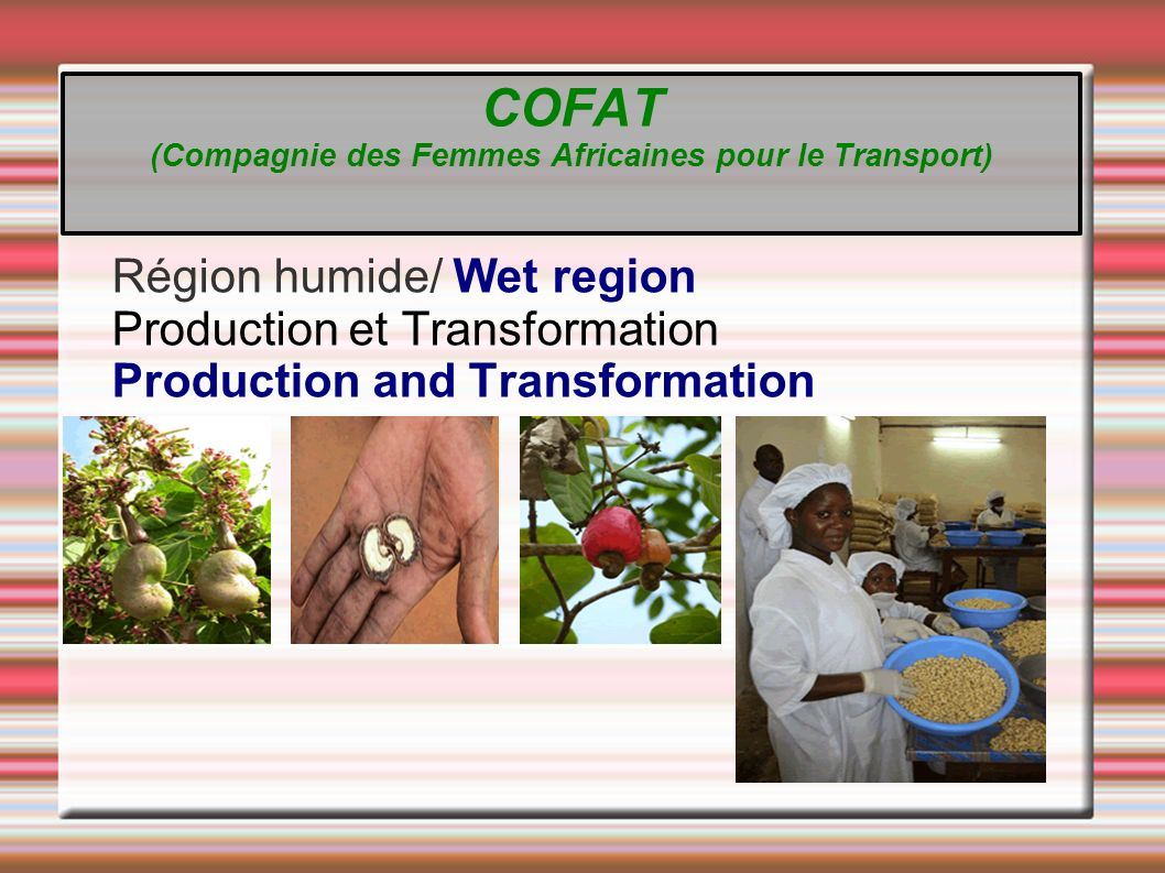 Région humide/ Wet region Production et Transformation Production and Transformation COFAT (Compagnie des Femmes Africaines pour le Transport)