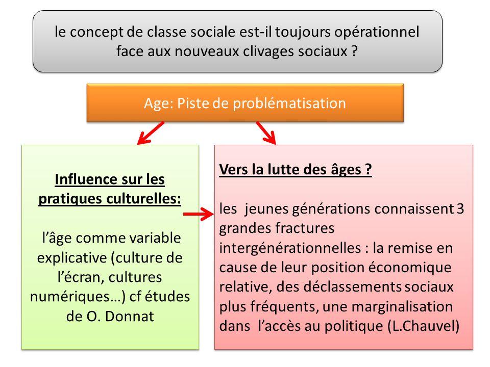 le concept de classe sociale est-il toujours opérationnel face aux nouveaux clivages sociaux .