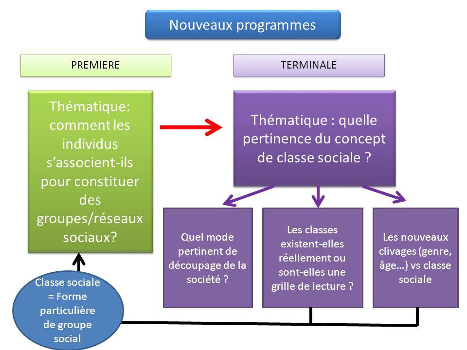 Nouveaux programmes PREMIERE Thématique: comment les individus sassocient-ils pour constituer des groupes/réseaux sociaux.