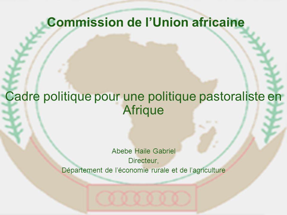 Cadre politique pour une politique pastoraliste en Afrique Abebe Haile Gabriel Directeur, Département de léconomie rurale et de lagriculture Commission de lUnion africaine
