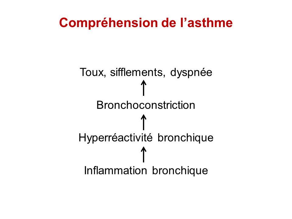 Compréhension de lasthme Toux, sifflements, dyspnée Bronchoconstriction Hyperréactivité bronchique Inflammation bronchique