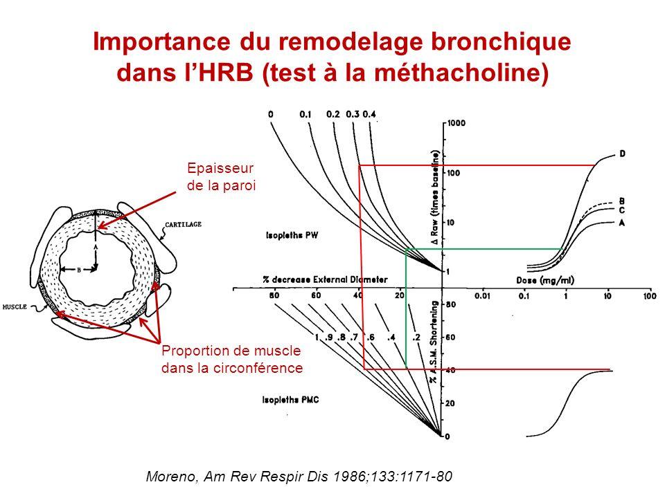 Importance du remodelage bronchique dans lHRB (test à la méthacholine) Epaisseur de la paroi Proportion de muscle dans la circonférence Moreno, Am Rev