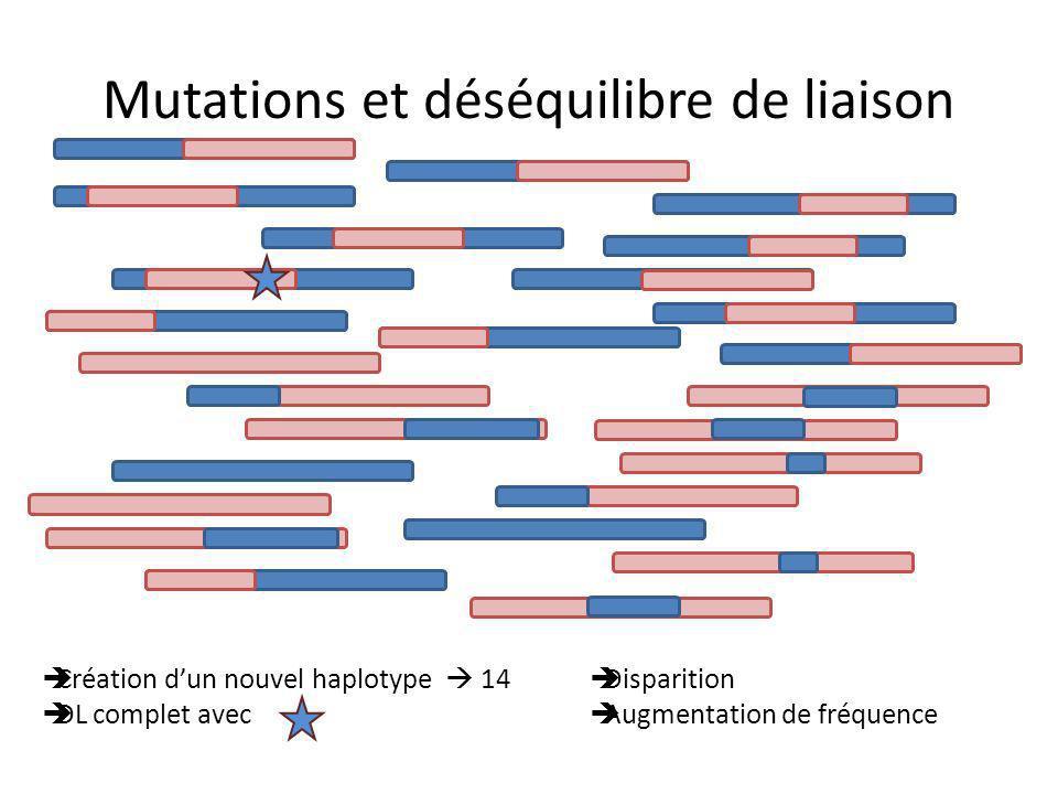 Mutations et déséquilibre de liaison Création dun nouvel haplotype 14 DL complet avec Disparition Augmentation de fréquence