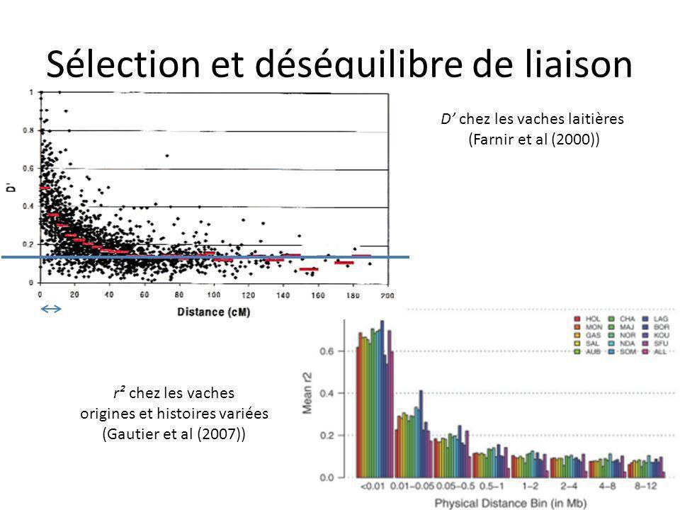 Sélection et déséquilibre de liaison D chez les vaches laitières (Farnir et al (2000)) r² chez les vaches origines et histoires variées (Gautier et al (2007))