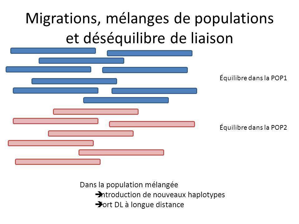 Migrations, mélanges de populations et déséquilibre de liaison Dans la population mélangée Introduction de nouveaux haplotypes Fort DL à longue distance Équilibre dans la POP1 Équilibre dans la POP2