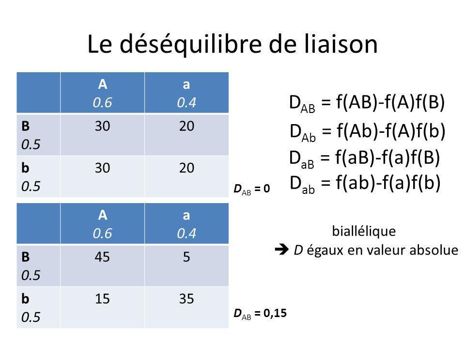 Le déséquilibre de liaison : >2 locus Travailler sur les haplotypes pour se ramener à 2 loci multialléliques Mesures liées à la notion didentité par descendance (IBD) – « Chromosome Segment Homozygosity » Hayes et al 2003 – « Decay Haplotype Sharing » Mc Peek et Strahs (1999)