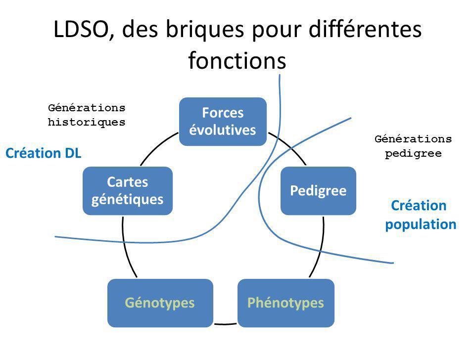 LDSO, des briques pour différentes fonctions Forces évolutives PedigreePhénotypesGénotypes Cartes génétiques Générations pedigree Générations historiques Création DL Création population