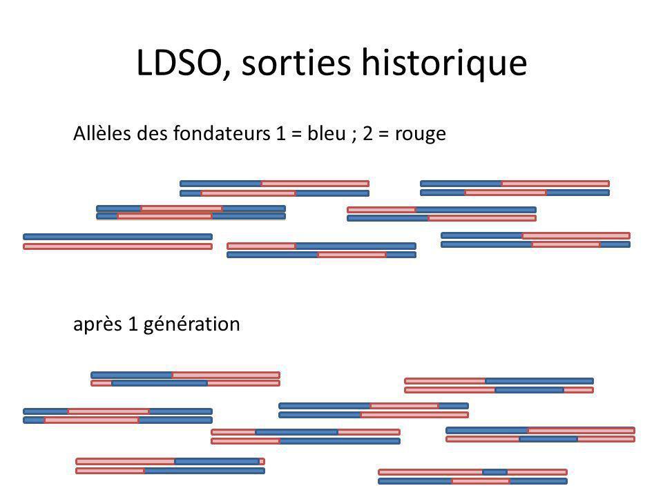 LDSO, sorties historique Allèles des fondateurs 1 = bleu ; 2 = rouge après 1 génération