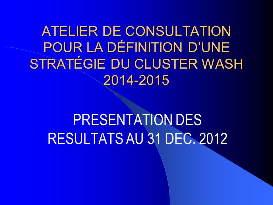 PRESENTATION DES RESULTATS AU 31 DEC. 2012 ATELIER DE CONSULTATION POUR LA DÉFINITION DUNE STRATÉGIE DU CLUSTER WASH 2014-2015