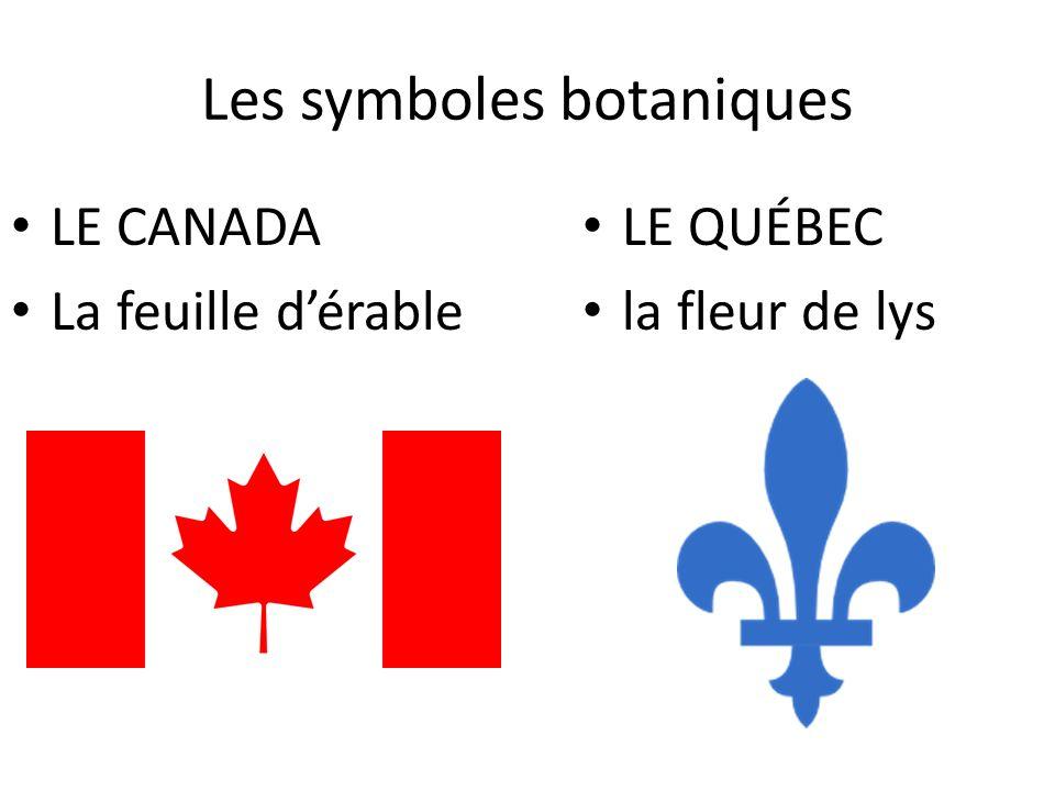 Les symboles botaniques LE CANADA La feuille dérable LE QUÉBEC la fleur de lys