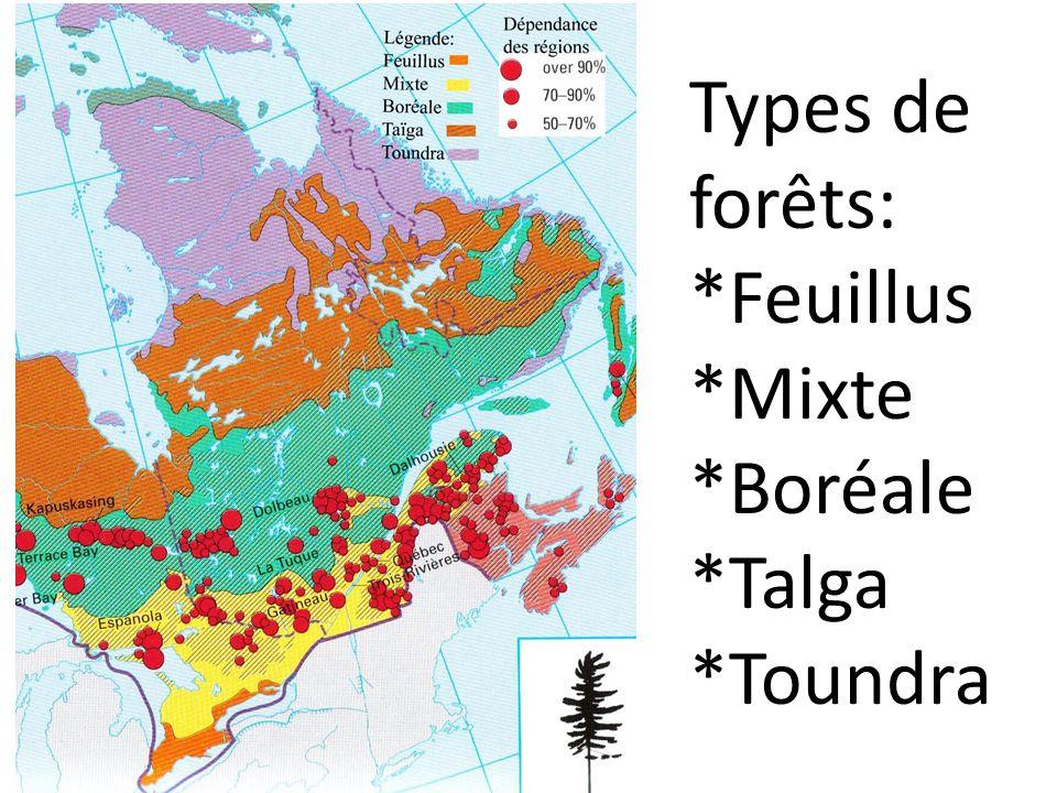Types de forêts: *Feuillus *Mixte *Boréale *Talga *Toundra