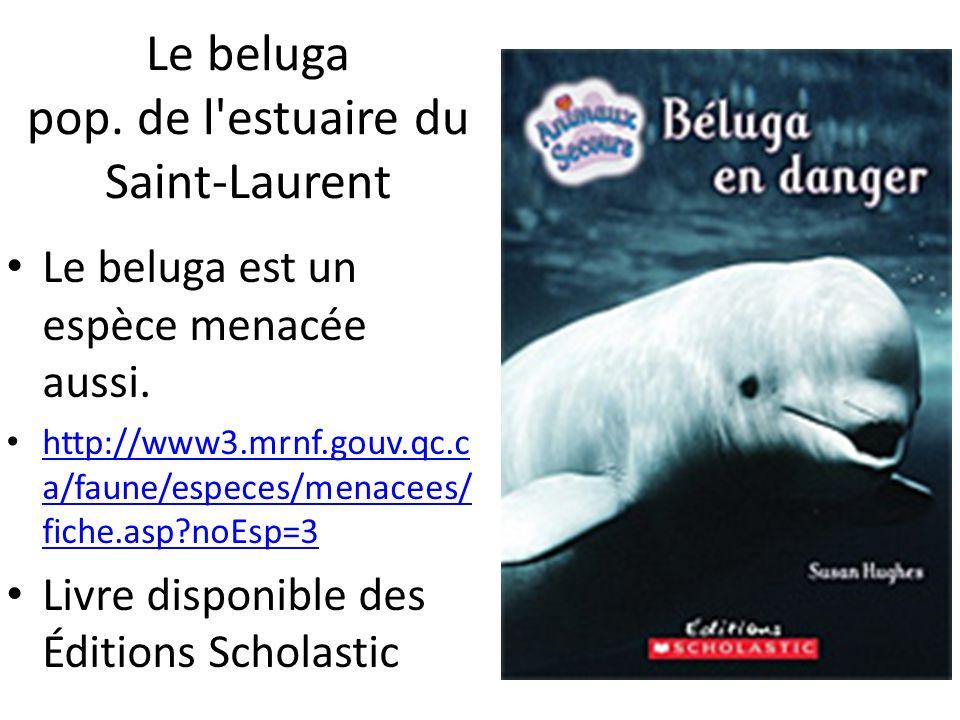 Le beluga pop. de l'estuaire du Saint-Laurent Le beluga est un espèce menacée aussi. http://www3.mrnf.gouv.qc.c a/faune/especes/menacees/ fiche.asp?no