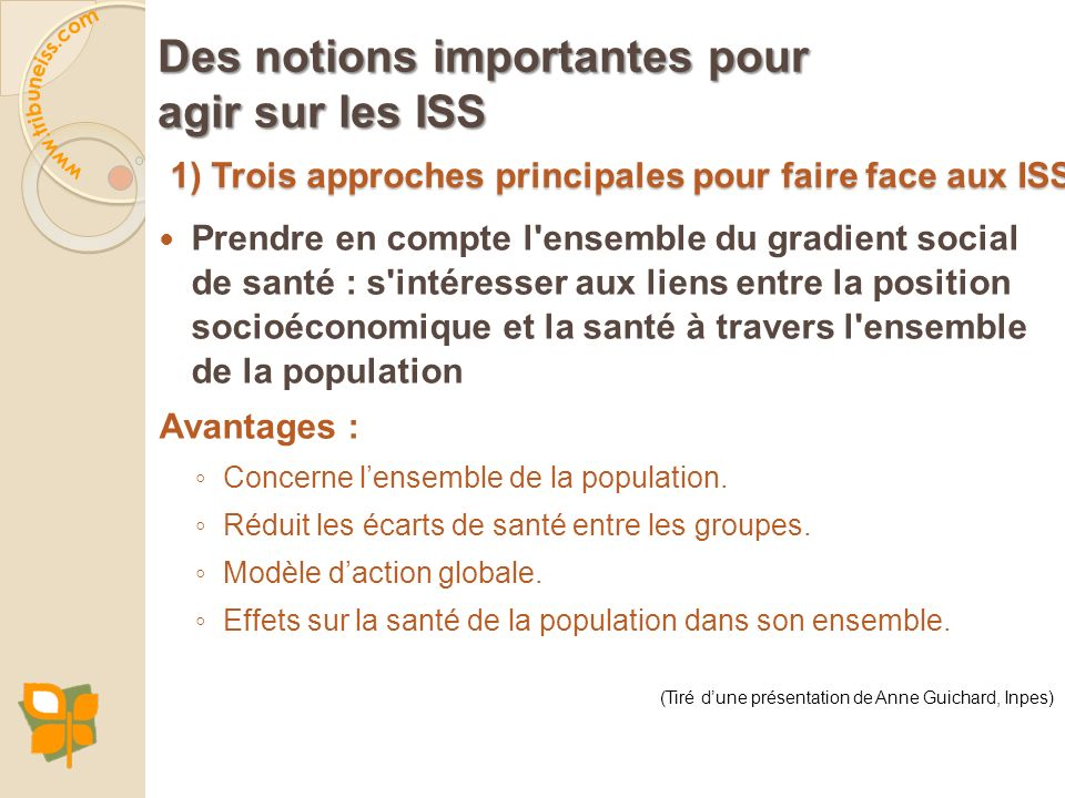 1) Trois approches principales pour faire face aux ISS Des notions importantes pour agir sur les ISS Prendre en compte l'ensemble du gradient social d