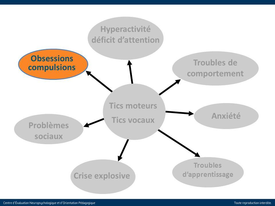 16 Troubles de comportement Obsessions compulsions Anxiété Troubles dapprentissage Crise explosive Problèmes sociaux Hyperactivité déficit dattention