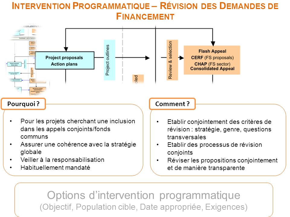 I NTERVENTION P ROGRAMMATIQUE – R ÉVISION DES D EMANDES DE F INANCEMENT Options dintervention programmatique (Objectif, Population cible, Date appropr