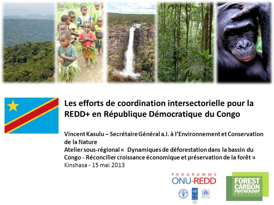 Les efforts de coordination intersectorielle pour la REDD+ en République Démocratique du Congo Vincent Kasulu – Secrétaire Général a.i. à lEnvironneme
