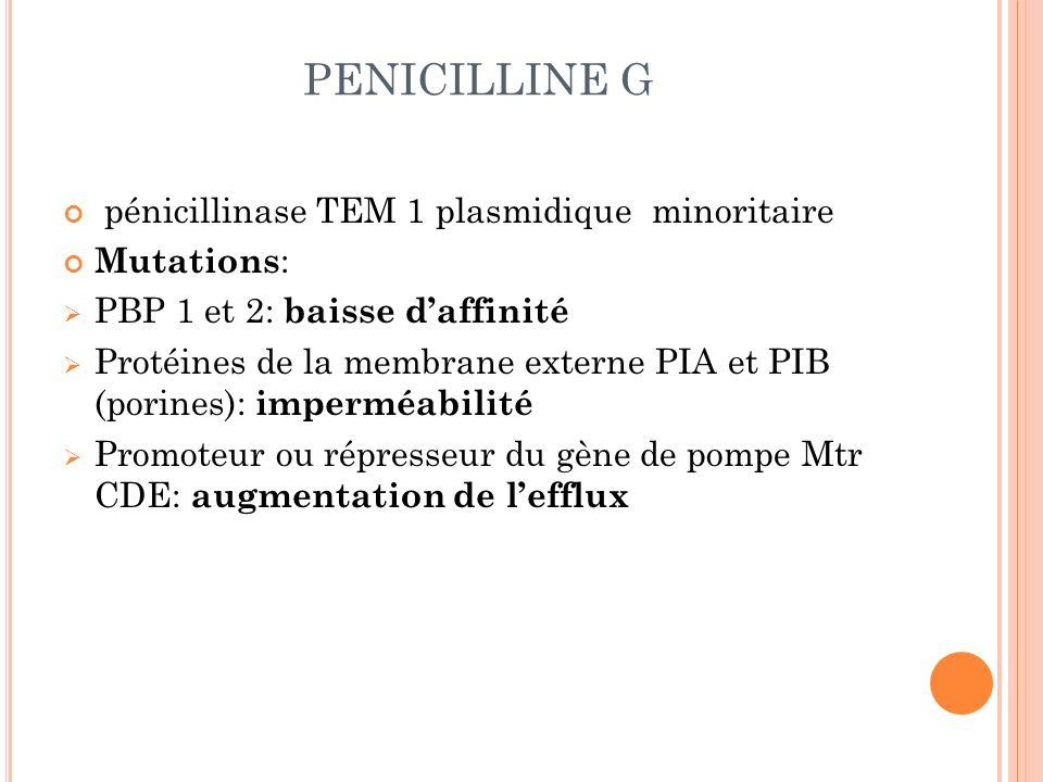 PENICILLINE G pénicillinase TEM 1 plasmidique minoritaire Mutations : PBP 1 et 2: baisse daffinité Protéines de la membrane externe PIA et PIB (porine